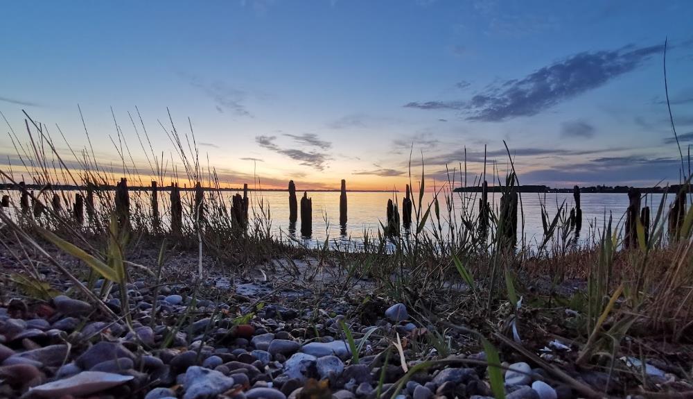 Naturstrand Dänholm