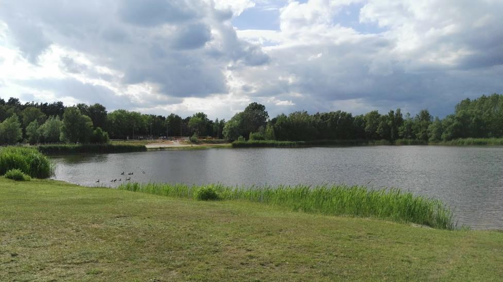 Der Bernsteinsee 🌊 Die Gay Cruising Area nördlich von Berlin