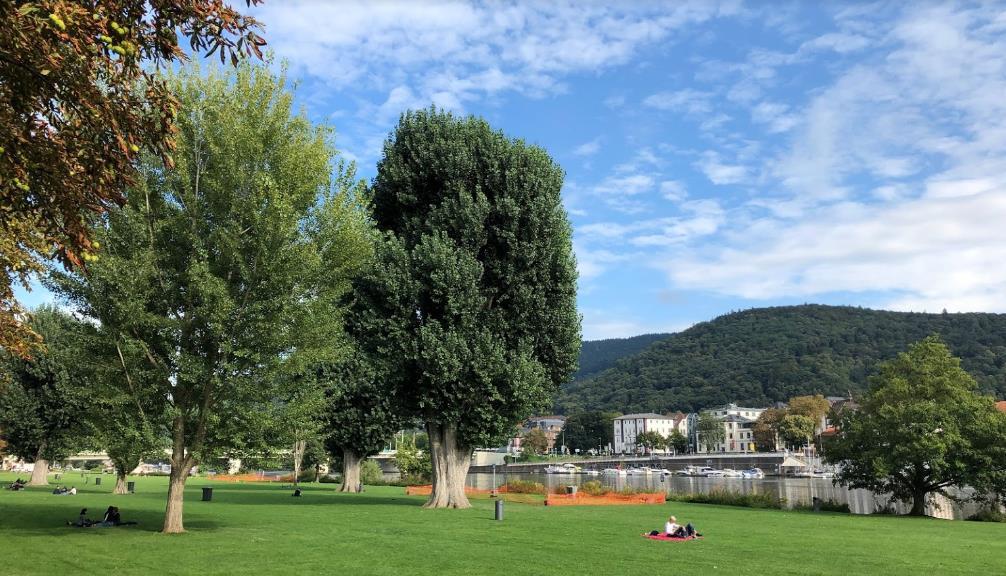 Klappe am Neckar 🚽 Der Gay Cruising Hotspot von Heidelberg