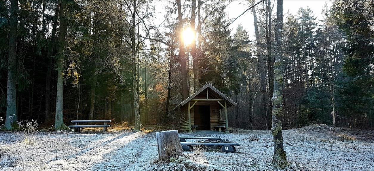 Naturpark Schönbuch 🌳 Der wunderschöne Cruising Hotspot