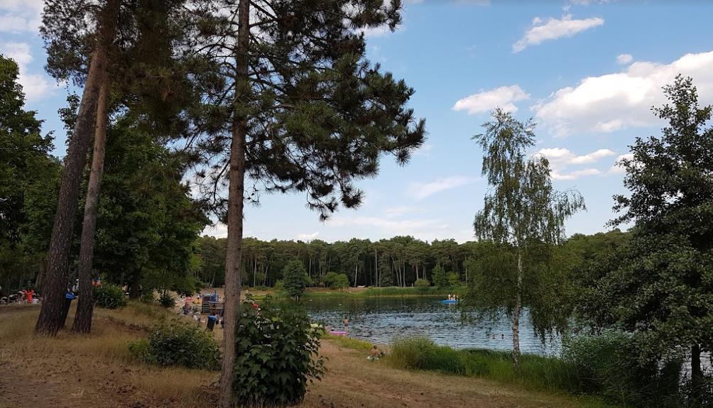 Waldschwimmbad