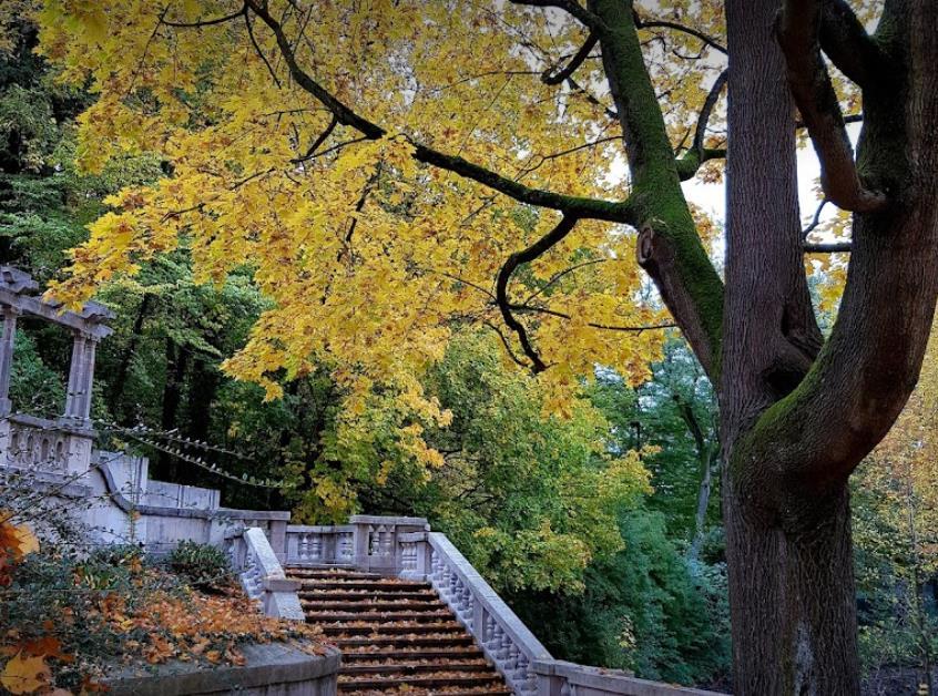 Tullnau-Park
